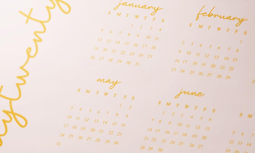Twenty Twenty Year View Calendar