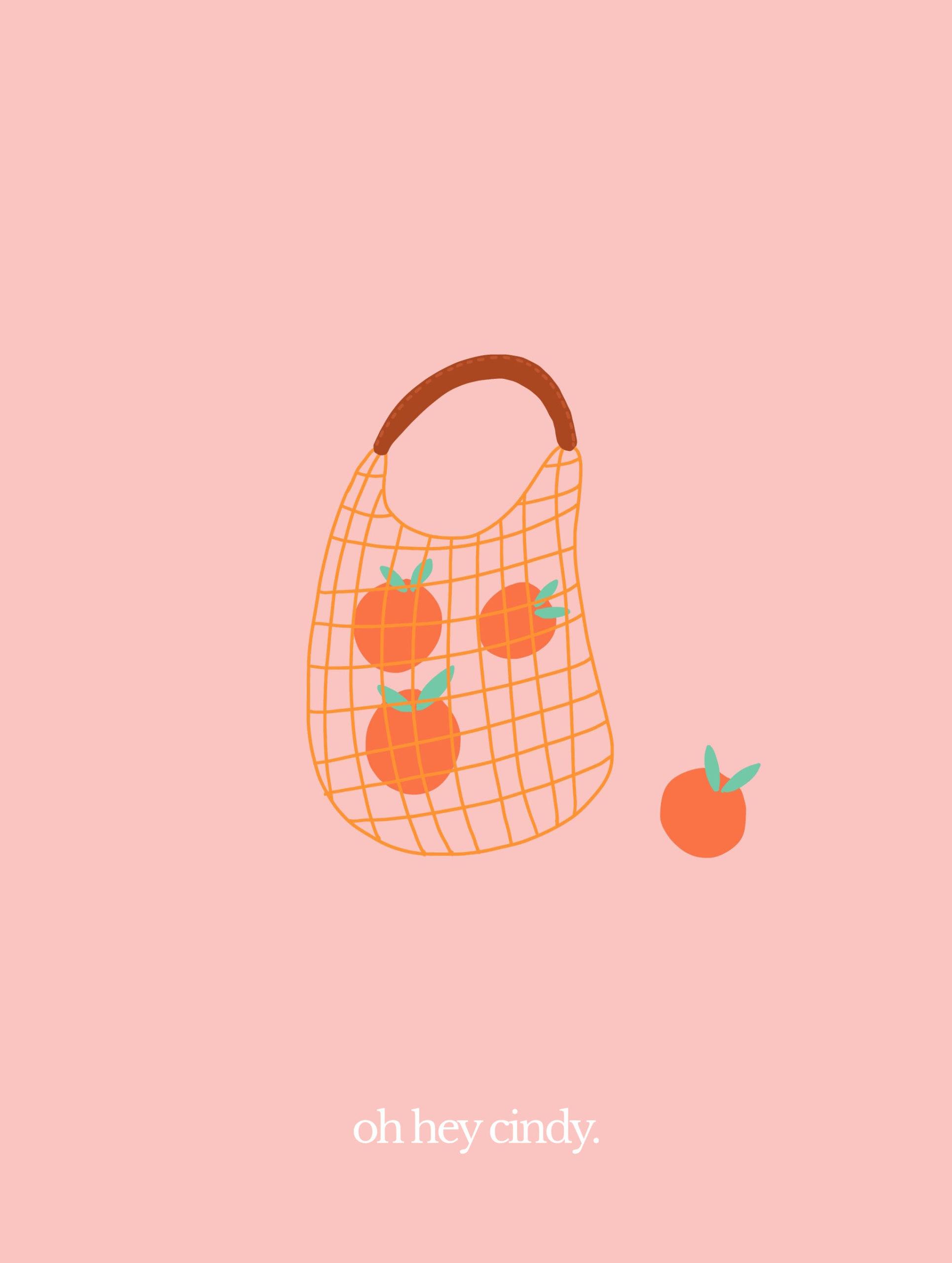 Orange Bag Illustration Video
