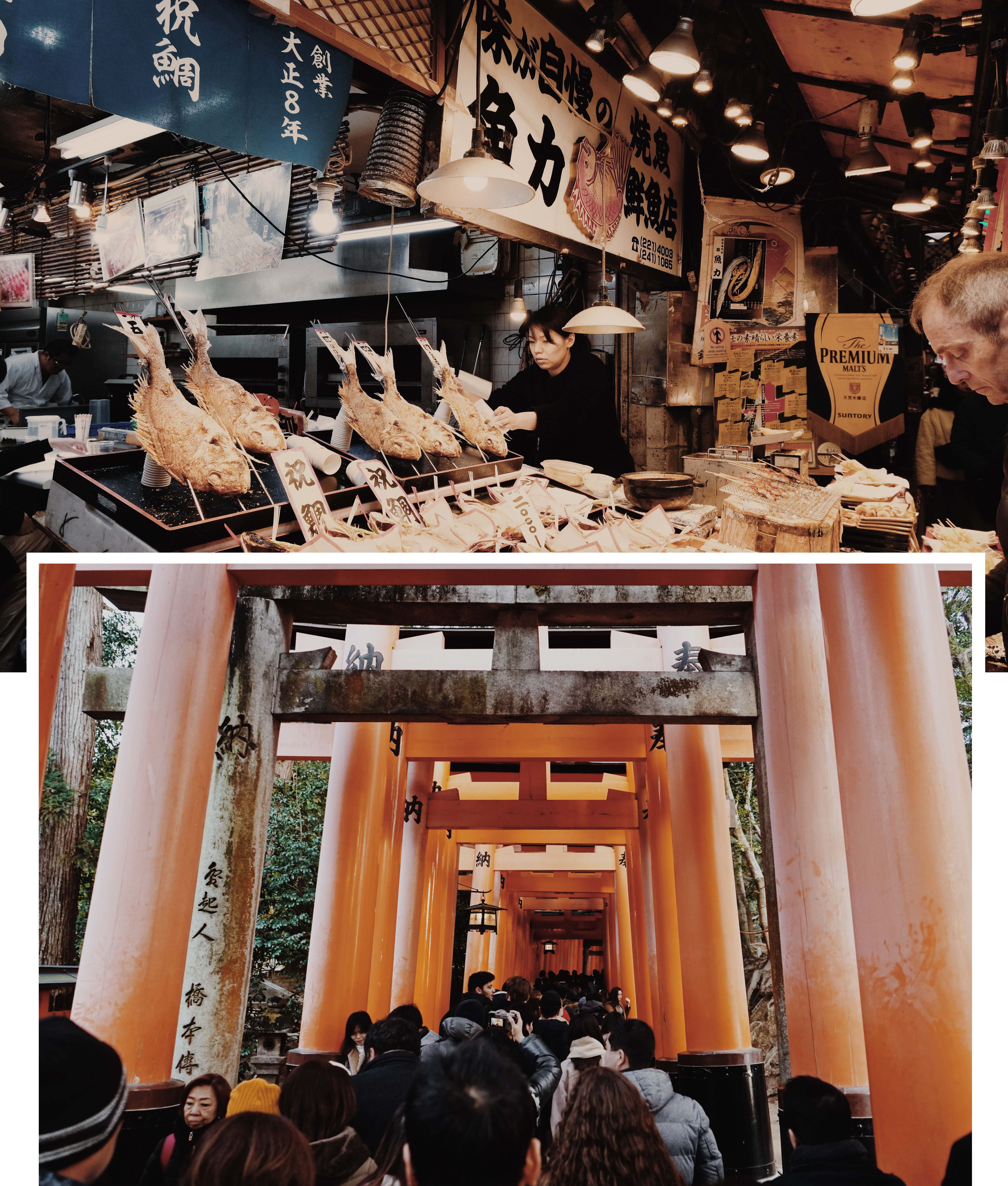 Kyoto Food Market and Fushimi Inari-Taisha