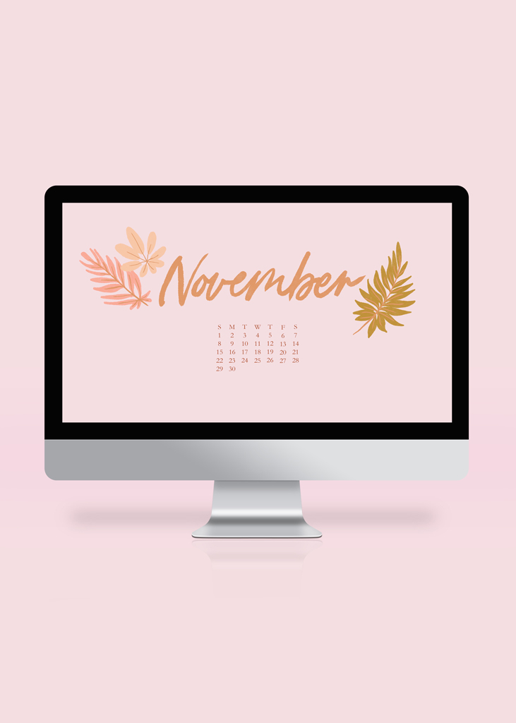 Oh Hey Cindy - Free November 2020 Wallpaper
