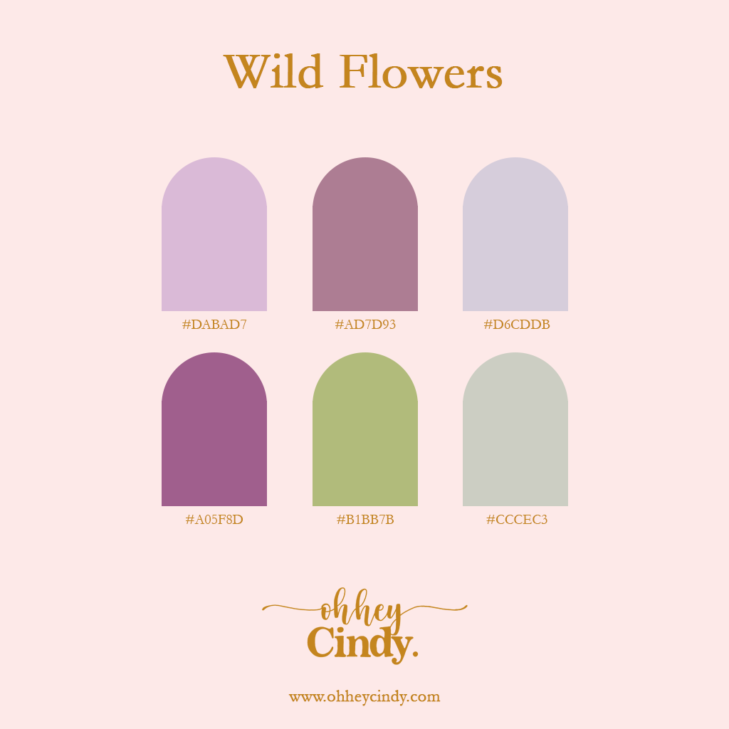 Oh Hey Cindy - Sprint Color Palette